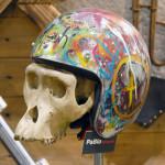 monkey skull